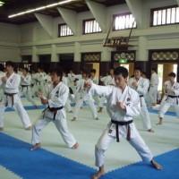 tsukuba001